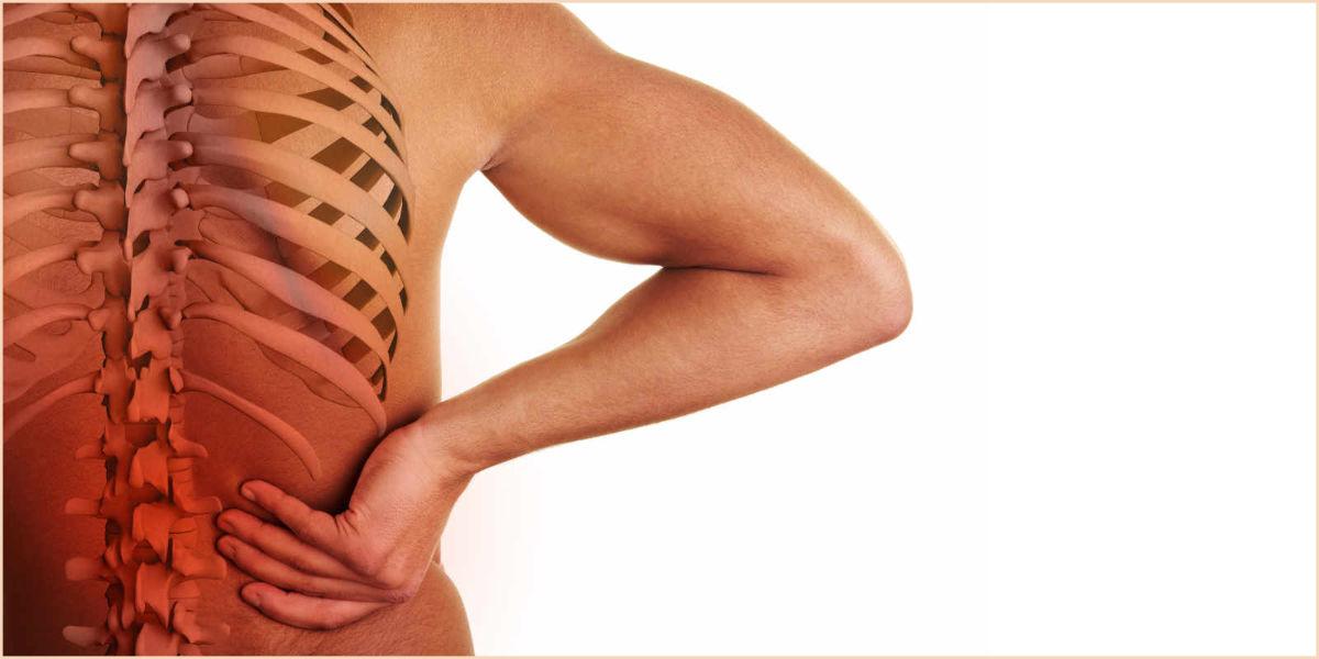 Osteopatia - Serviços - Clínica de Osteopatia & Spa Herbal Dr. Daniel Gonçalves